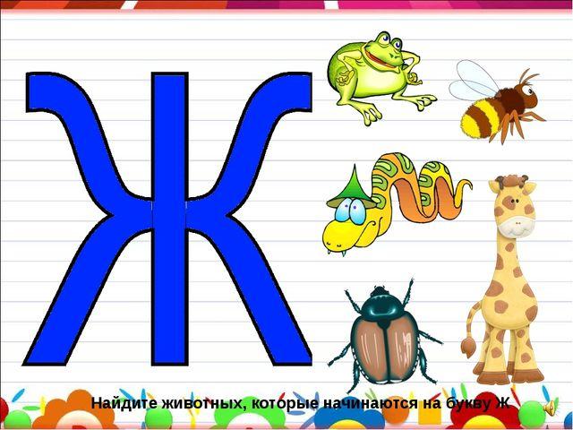 Найдите животных, которые начинаются на букву Ж