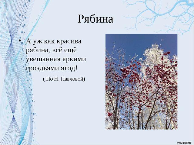 Рябина А уж как красива рябина, всё ещё увешанная яркими гроздьями ягод! ( По...