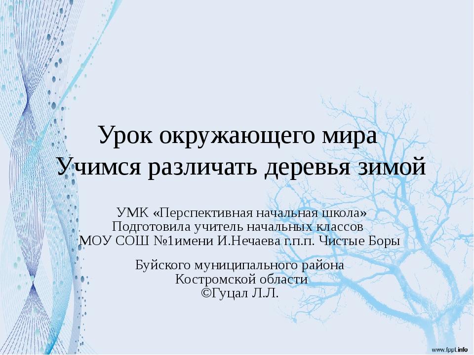 Урок окружающего мира Учимся различать деревья зимой УМК «Перспективная начал...