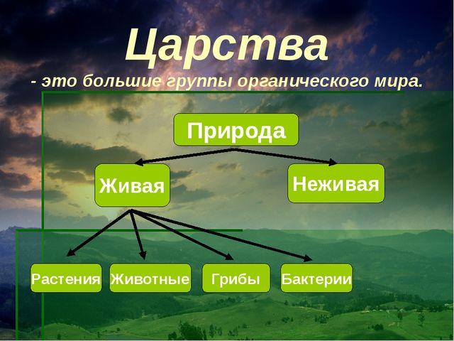 Царства - это большие группы органического мира. Природа Живая Неживая Растен...