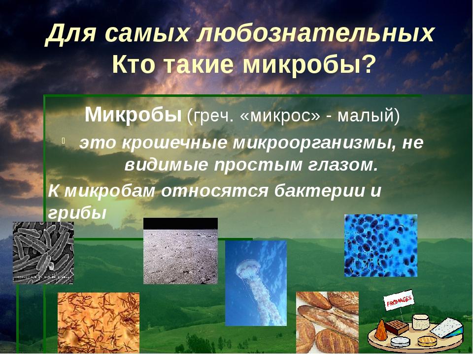 Для самых любознательных Кто такие микробы? Микробы (греч. «микрос» - малый)...