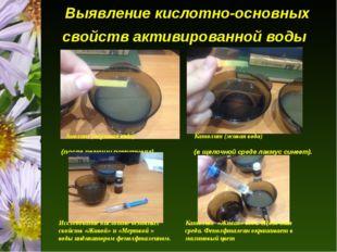 Выявление кислотно-основных свойств активированной воды Анолит (мёртвая вода)