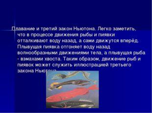 Плавание и третий закон Ньютона. Легко заметить, что в процессе движения рыбы