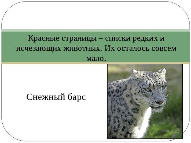 Снежный барс Красные страницы – списки редких и исчезающих животных. Их оста...