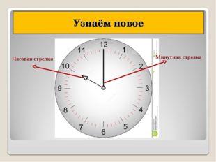 Узнаём новое Часовая стрелка Минутная стрелка