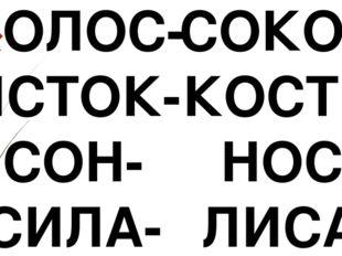 КОЛОС- ИСТОК- СОН- СИЛА- СОКОЛ КОСТИ НОС ЛИСА