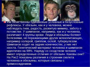 Им свойственны одинаковые условные и безусловные рефлексы. У обезьян, как и у