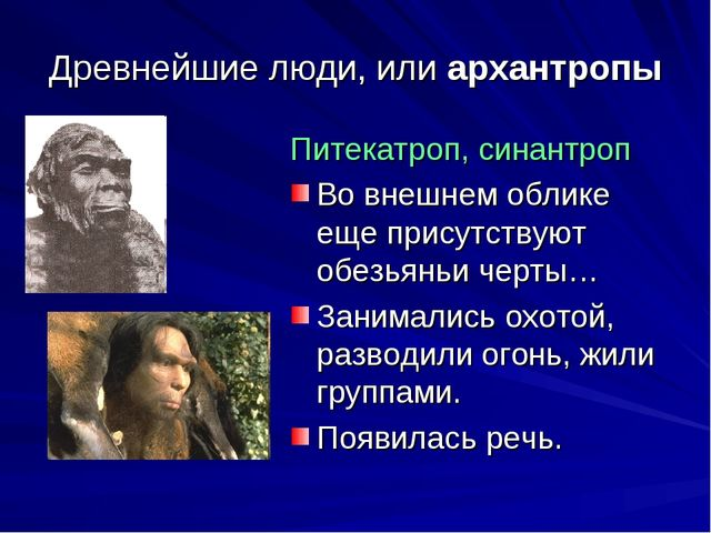 Древнейшие люди, или архантропы Питекатроп, синантроп Во внешнем облике еще п...