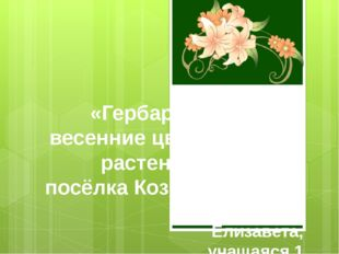 «Гербарий: весенние цветущие растения посёлка Козыревск» Автор: Александрова