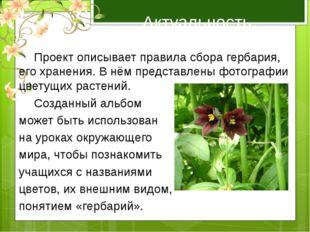 Актуальность работы  Проект описывает правила сбора гербария, его хранения.