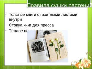 Правила сушки растений Толстые книги с газетными листами внутри Стопка книг д