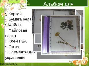 Альбом для гербария Картон Бумага белая Файлы Файловая папка Клей ПВА Скотч Э
