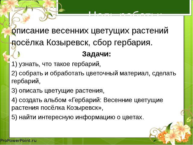 Цель работы: описание весенних цветущих растений посёлка Козыревск, сбор герб...