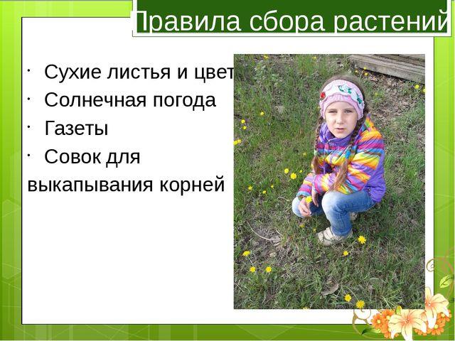 Правила сбора растений Сухие листья и цветы Солнечная погода Газеты Совок для...