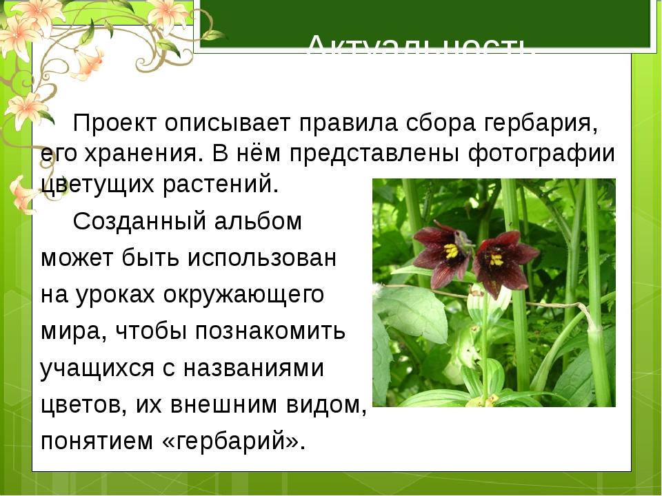 Актуальность работы  Проект описывает правила сбора гербария, его хранения....