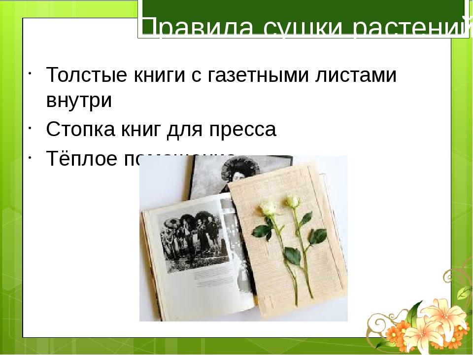 Правила сушки растений Толстые книги с газетными листами внутри Стопка книг д...