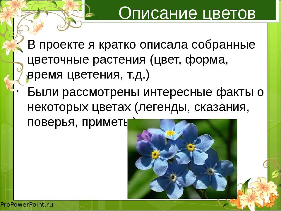 Описание цветов В проекте я кратко описала собранные цветочные растения (цвет...