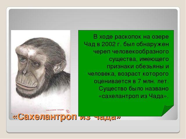 «Сахелантроп из Чада» В ходе раскопок на озере Чад в 2002 г. был обнаружен че...