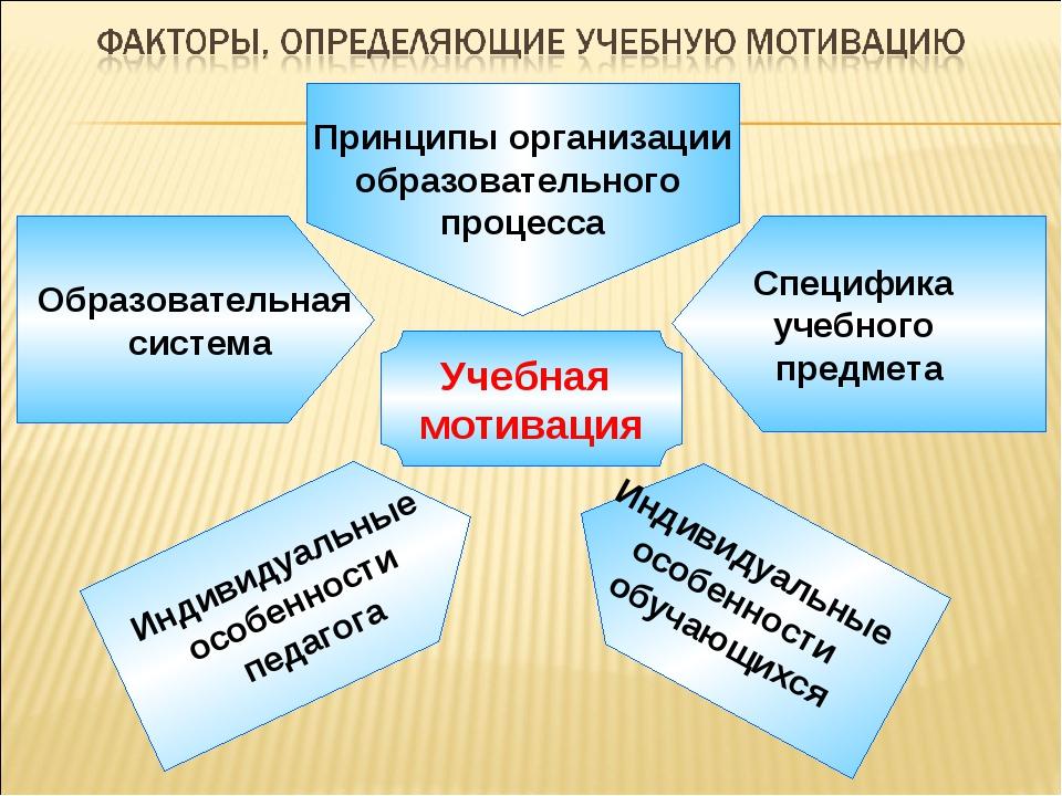 Учебная мотивация Образовательная система Специфика учебного предмета Индиви...