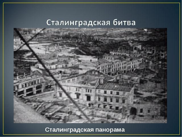 Сталинградская панорама
