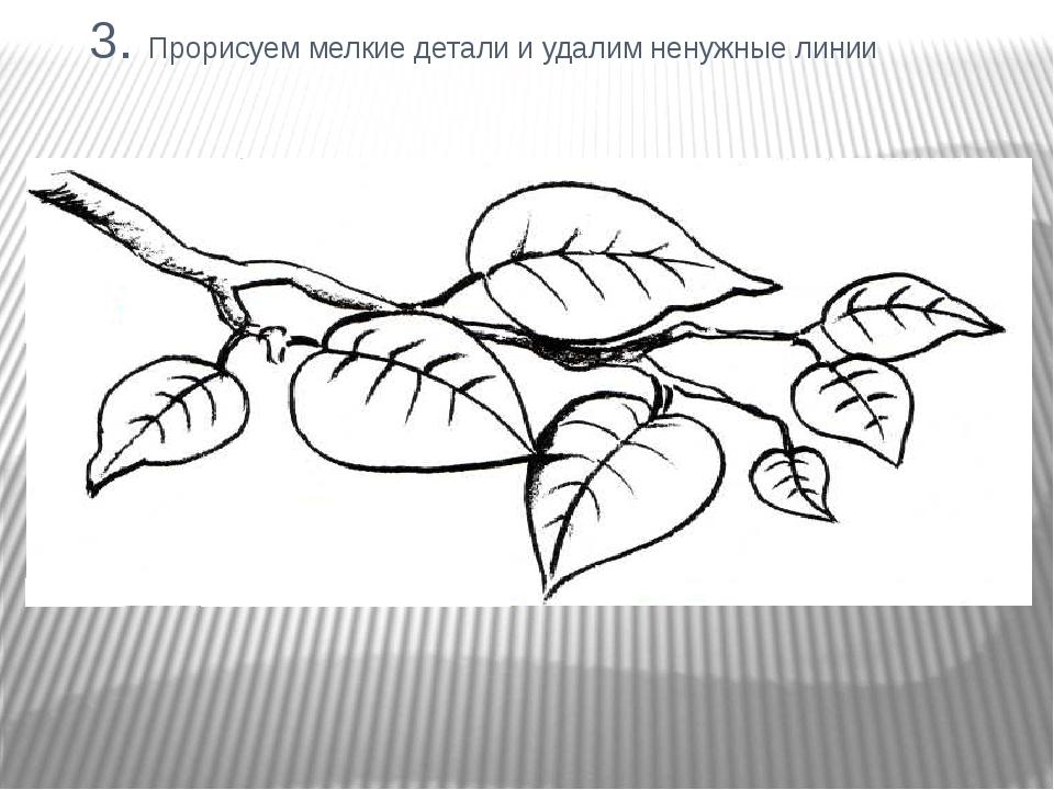 3. Прорисуем мелкие детали и удалим ненужные линии