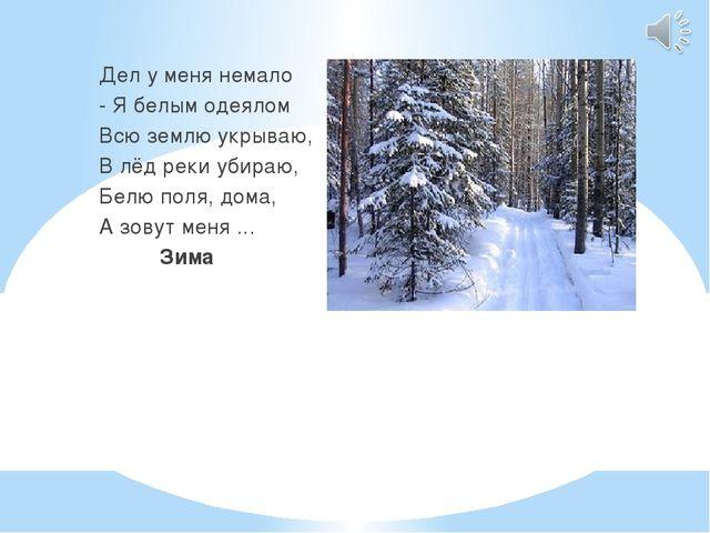 Дел у меня немало - Я белым одеялом Всю землю укрываю, В лёд реки убираю, Бе...