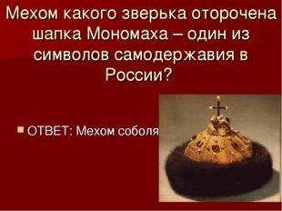 Мехом какого зверька оторочена шапка Мономаха – один из символов самодержавия