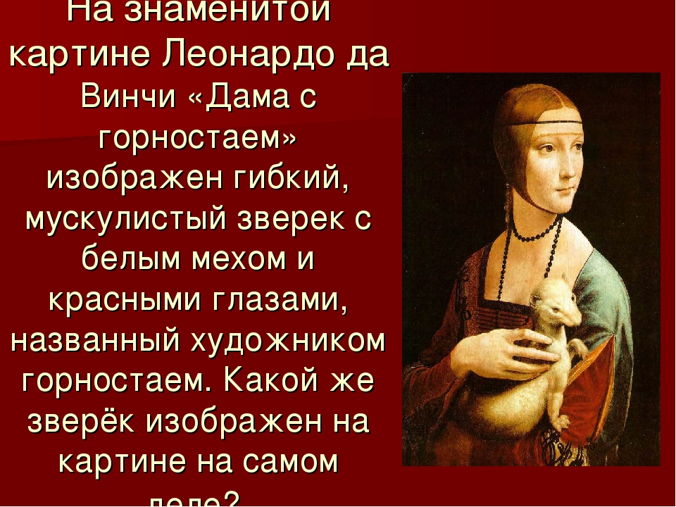 На знаменитой картине Леонардо да Винчи «Дама с горностаем» изображен гибкий,...