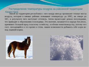Распределение температуры воздуха на равнинной территории Казахстана Зимой н