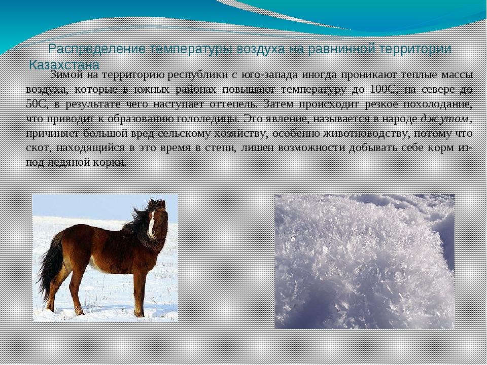 Распределение температуры воздуха на равнинной территории Казахстана Зимой н...