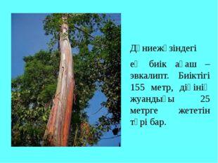 Дүниежүзіндегі ең биік ағаш – эвкалипт. Биіктігі 155 метр, діңінің жуандығы