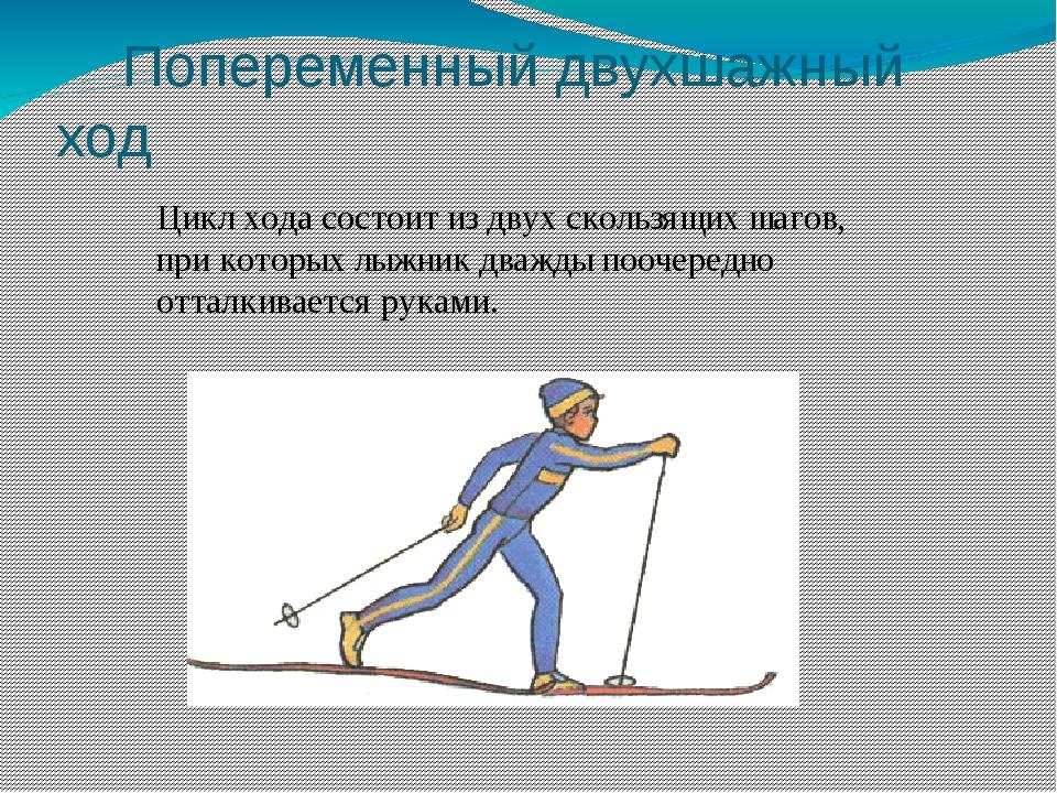 Попеременный лыжный ход картинки