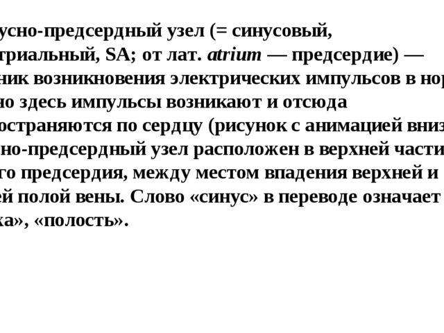 1)синусно-предсердный узел(= синусовый, синоатриальный,SA; от лат.atrium...
