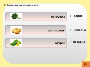 воде овощах макаронах 7. Витаминов больше содержится в: ● верно ● неверно ●