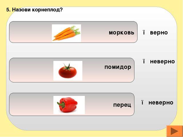 петрушка картофель огурец 6. Овощ, листья которого едят: ● верно ● неверно ●...