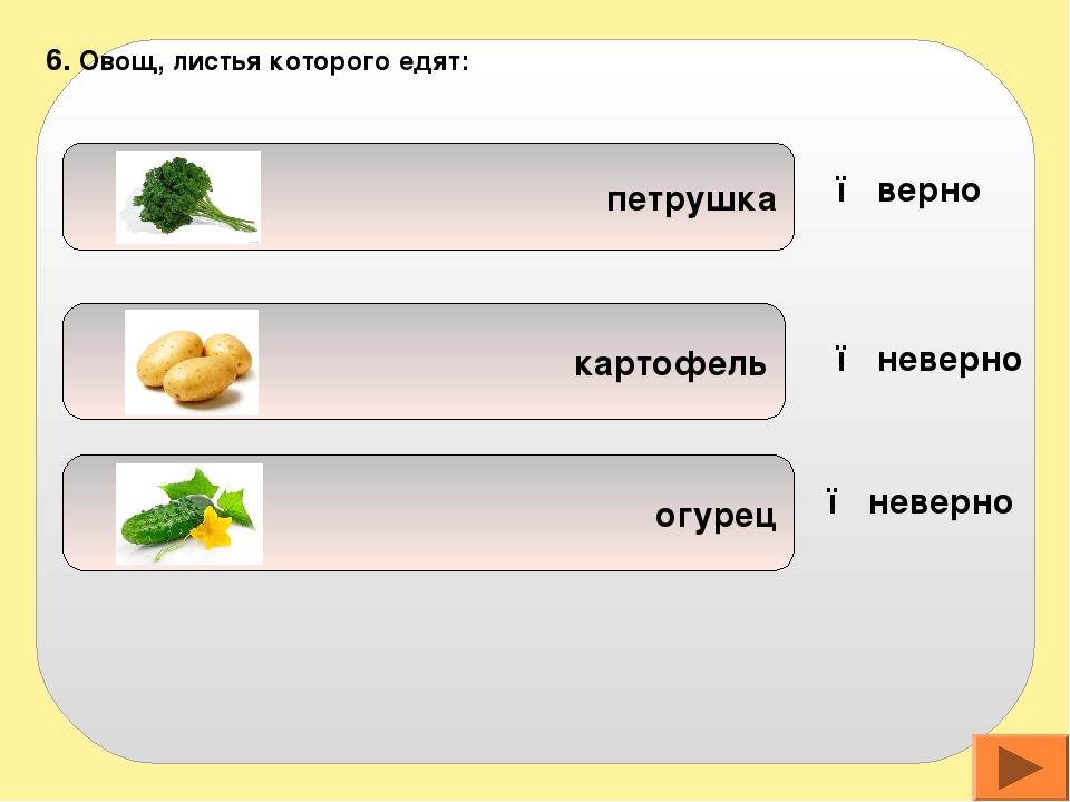воде овощах макаронах 7. Витаминов больше содержится в: ● верно ● неверно ●...