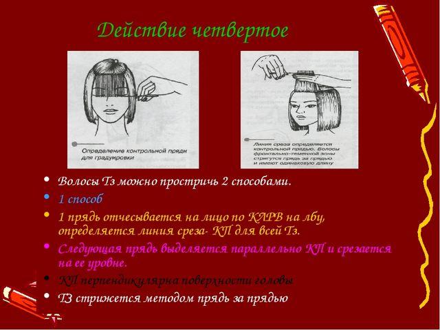 Действие четвертое Волосы Тз можно простричь 2 способами. 1 способ 1 прядь от...