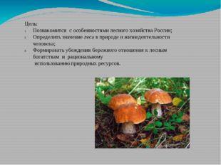 Цель: Познакомится с особенностями лесного хозяйства России; Определить значе