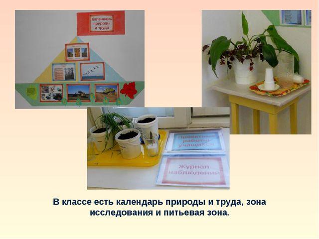В классе есть календарь природы и труда, зона исследования и питьевая зона.