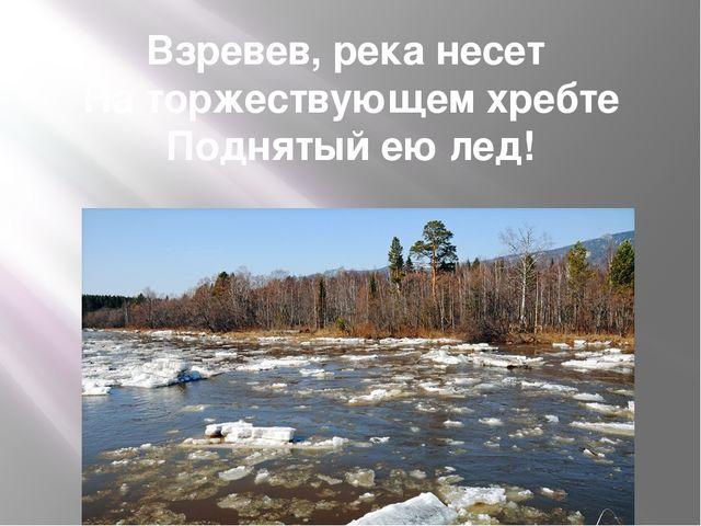 Взревев, река несет На торжествующем хребте Поднятый ею лед!