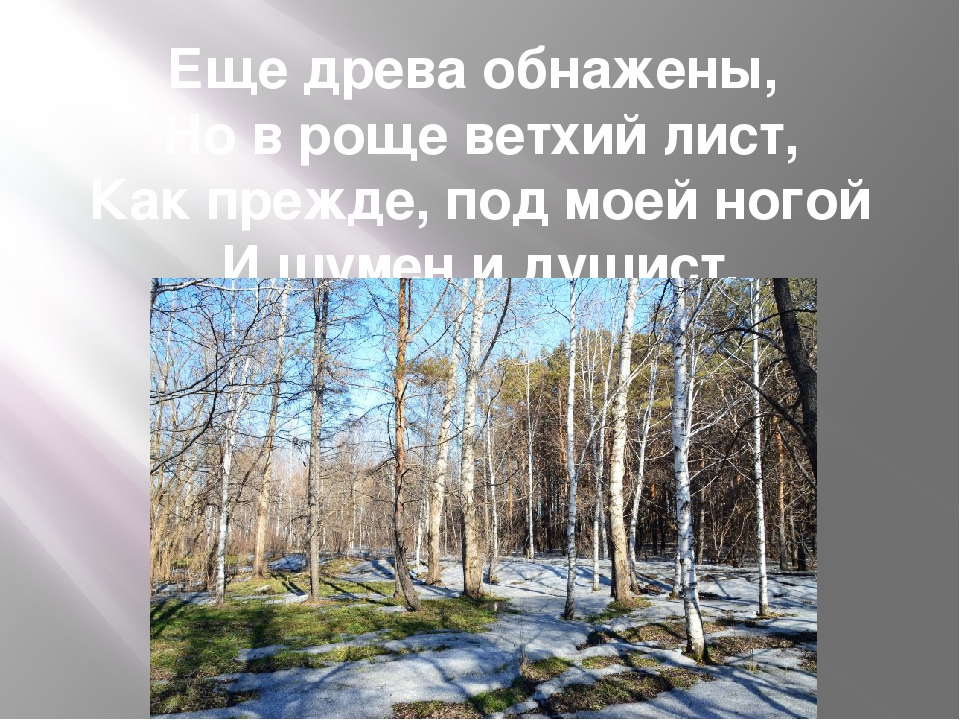 Еще древа обнажены, Но в роще ветхий лист, Как прежде, под моей ногой И шумен...