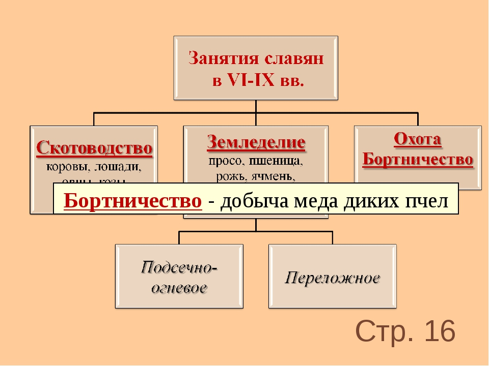 Бортничество - добыча меда диких пчел Стр. 16