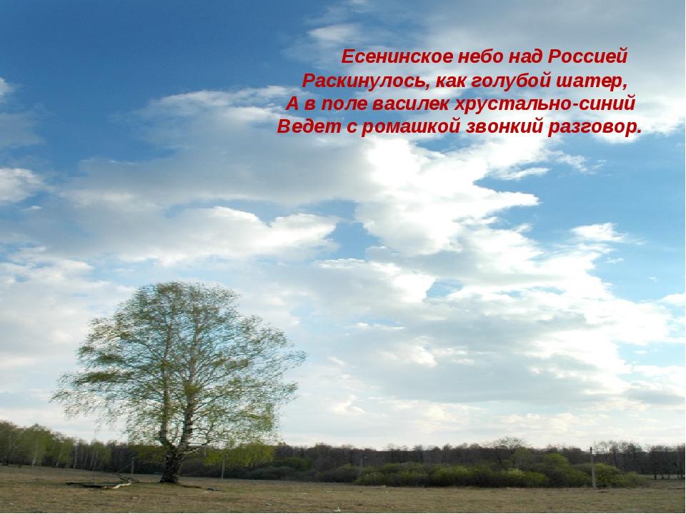 Есенинское небо над Россией Раскинулось, как голубой шатер, А в поле василек...