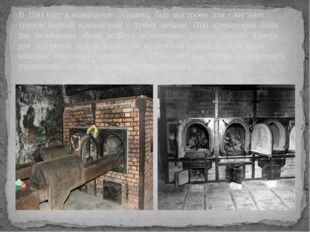 В 1941 году к концлагере Аушвиц, был выстроен для сжигания трупов первый крем