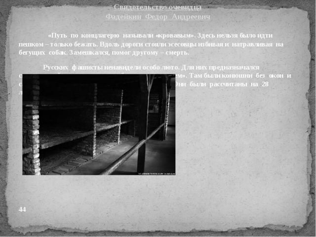 «Путь по концлагерю называли «кровавым». Здесь нельзя было идти пешком – тол...