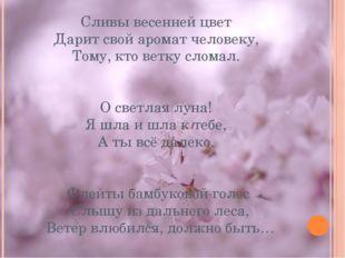 Сливы весенней цвет Дарит свой аромат человеку, Тому, кто ветку сломал. О све