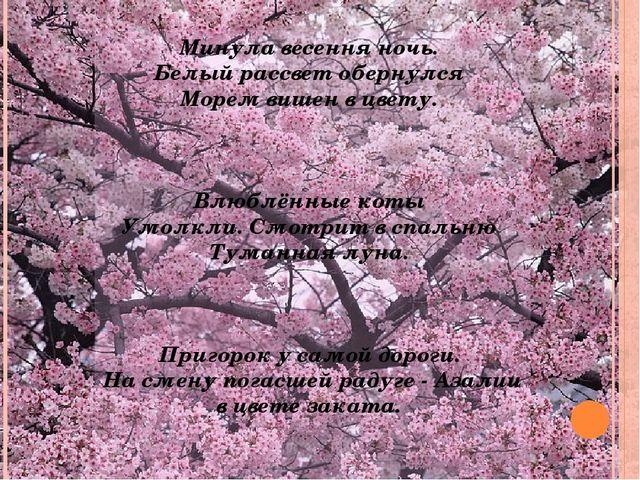 Минула весення ночь. Белый рассвет обернулся Морем вишен в цвету. Влюблённые...