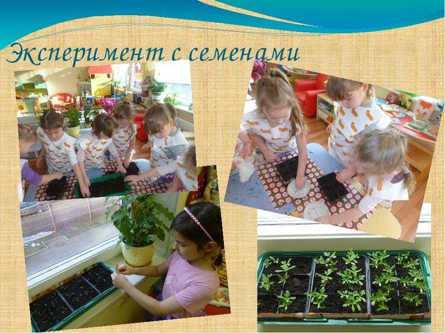 Эксперимент с семенами