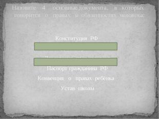 Конституция РФ Личное дело обучающегося Декларация прав человека Паспорт граж