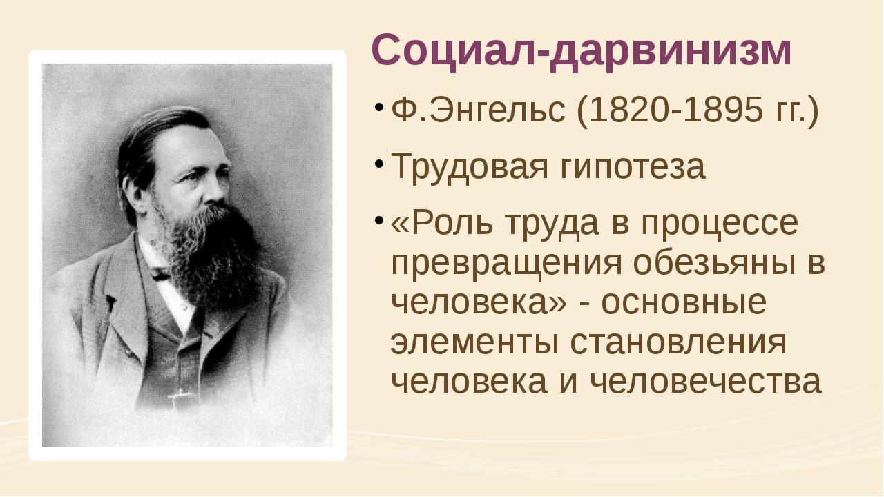 Социал-дарвинизм Ф.Энгельс (1820-1895 гг.) Трудовая гипотеза «Роль труда в пр...